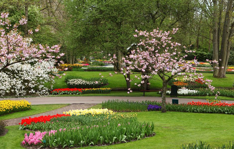 Consejos para mantenimiento correcto de un jard n - Mantenimiento de un jardin ...